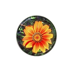 Flower In A Parking Lot Golf Ball Marker 4 Pack (for Hat Clip) by sirhowardlee