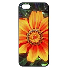 Flower In A Parking Lot Apple Iphone 5 Seamless Case (black) by sirhowardlee