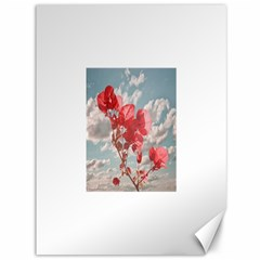 Flowers In The Sky Canvas 36  X 48  (unframed) by dflcprints