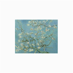 Vincent Van Gogh, Almond Blossom Canvas 24  X 36  (unframed) by Oldmasters