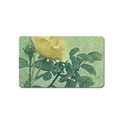 Yellow Rose Vintage Style  Magnet (name Card) by dflcprints
