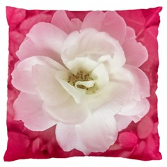 White Rose With Pink Leaves Around  Large Cushion Case (two Sided)  by dflcprints