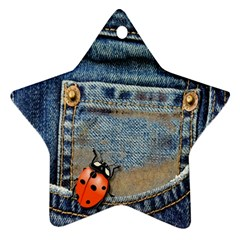 Blue Jean Lady Bug Star Ornament (two Sides) by TheWowFactor