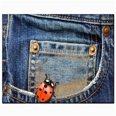 Blue Jean Lady Bug Canvas 8  X 10  (unframed) by TheWowFactor