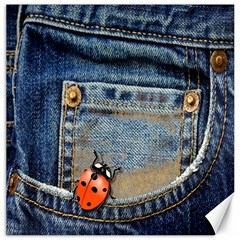 Blue Jean Lady Bug Canvas 12  X 12  (unframed) by TheWowFactor