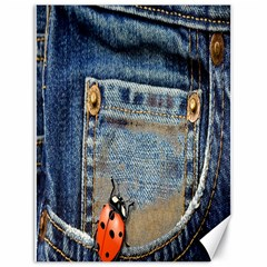 Blue Jean Lady Bug Canvas 18  X 24  (unframed) by TheWowFactor