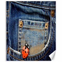 Blue Jean Lady Bug Canvas 20  X 24  (unframed) by TheWowFactor