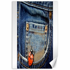 Blue Jean Lady Bug Canvas 20  X 30  (unframed) by TheWowFactor