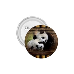 Panda Love 1 75  Button by TheWowFactor