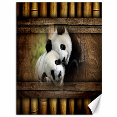 Panda Love Canvas 36  X 48  (unframed) by TheWowFactor