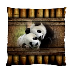 Panda Love Cushion Case (single Sided)  by TheWowFactor