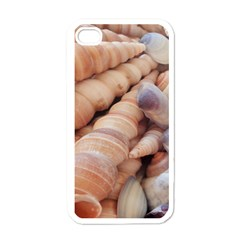 Sea Shells Apple Iphone 4 Case (white) by yoursparklingshop