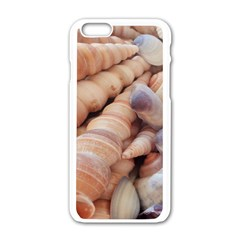 Sea Shells Apple Iphone 6 White Enamel Case by yoursparklingshop