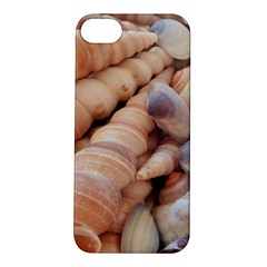 Sea Shells Apple Iphone 5s Hardshell Case by yoursparklingshop