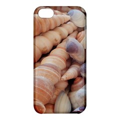 Sea Shells Apple Iphone 5c Hardshell Case by yoursparklingshop
