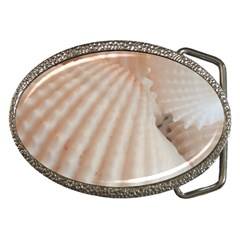 Sunny White Seashells Belt Buckle (oval) by yoursparklingshop
