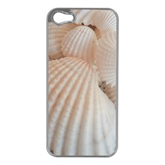 Sunny White Seashells Apple Iphone 5 Case (silver) by yoursparklingshop