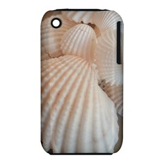 Sunny White Seashells Apple Iphone 3g/3gs Hardshell Case (pc+silicone) by yoursparklingshop