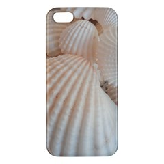 Sunny White Seashells Apple Iphone 5 Premium Hardshell Case by yoursparklingshop