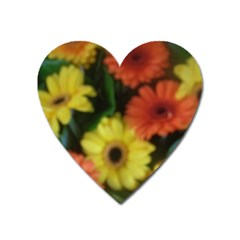 Orange Yellow Daisy Flowers Gerbera Magnet (heart) by yoursparklingshop