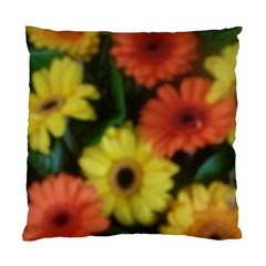 Orange Yellow Daisy Flowers Gerbera Cushion Case (two Sided)  by yoursparklingshop