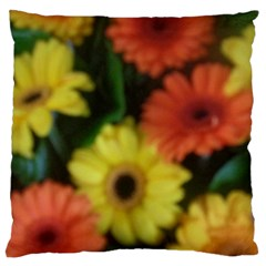 Orange Yellow Daisy Flowers Gerbera Large Cushion Case (two Sided)  by yoursparklingshop