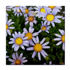 Yellow White Daisy Flowers Ceramic Tile