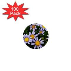 Yellow White Daisy Flowers 1  Mini Button (100 Pack)