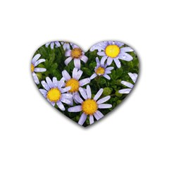 Yellow White Daisy Flowers Drink Coasters (heart)