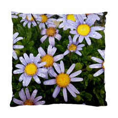 Yellow White Daisy Flowers Cushion Case (single Sided)  by yoursparklingshop