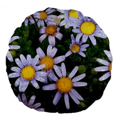 Yellow White Daisy Flowers Large 18  Premium Round Cushion