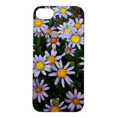 Yellow White Daisy Flowers Apple Iphone 5s Hardshell Case by yoursparklingshop
