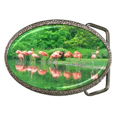 Flamingo Birds At Lake Belt Buckle (oval) by yoursparklingshop
