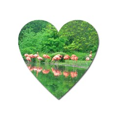 Flamingo Birds At Lake Magnet (heart) by yoursparklingshop