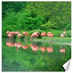 Flamingo Birds At Lake Canvas 12  X 12  (unframed) by yoursparklingshop