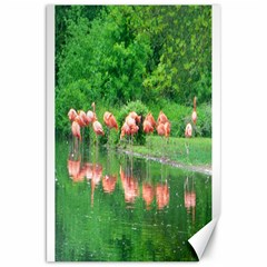 Flamingo Birds At Lake Canvas 20  X 30  (unframed)