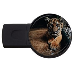 Photo  4gb Usb Flash Drive (round) by things9things