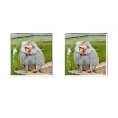 Grey Monkey Macaque Cufflinks (square)