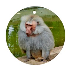 Grey Monkey Macaque Round Ornament (two Sides)