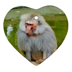 Grey Monkey Macaque Heart Ornament (two Sides) by yoursparklingshop