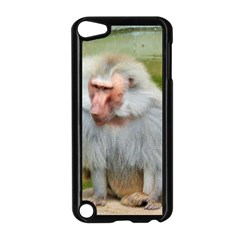 Grey Monkey Macaque Apple Ipod Touch 5 Case (black)