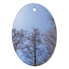 Large Trees In Sky Oval Ornament by yoursparklingshop