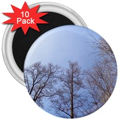 Large Trees In Sky 3  Button Magnet (10 Pack)