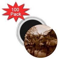 Native American 1 75  Button Magnet (100 Pack) by boho