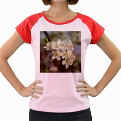 Spring Flowers Women s Cap Sleeve T Shirt (colored) by anstey
