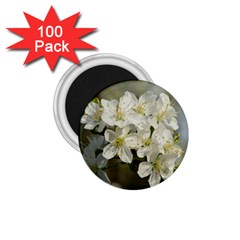 Spring Flowers 1 75  Button Magnet (100 Pack) by anstey