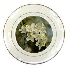 Spring Flowers Porcelain Display Plate by anstey