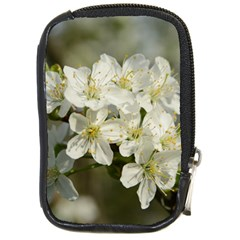 Spring Flowers Compact Camera Leather Case by anstey