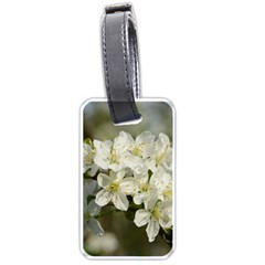 Spring Flowers Luggage Tag (one Side) by anstey