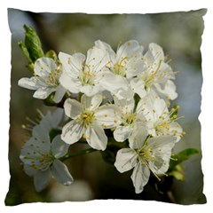 Spring Flowers Large Cushion Case (two Sided)  by anstey
